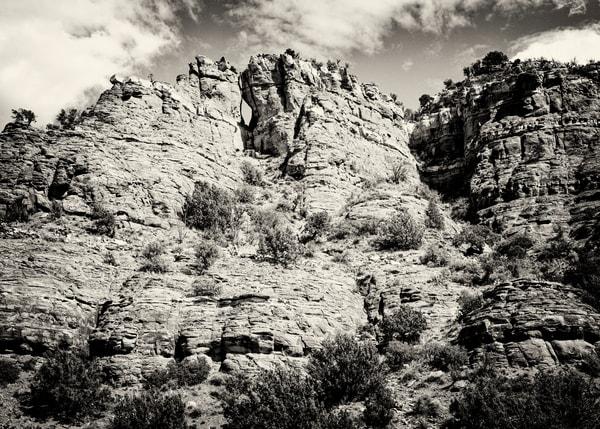 Sedonda 1134 Sepia Photography Art | Colin Murray Photography LLC