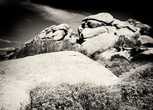 Cave Creek 8723 Sepia Photography Art | Colin Murray Photography LLC