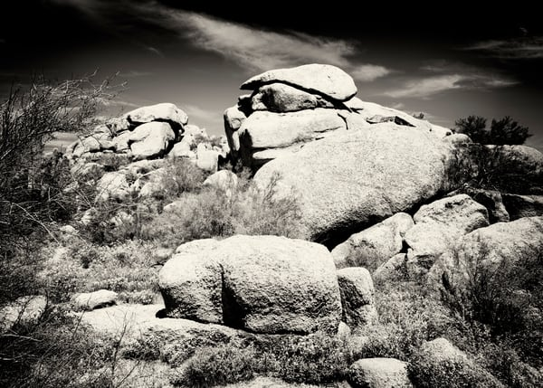 Cave Creek 8725 Sepia Photography Art | Colin Murray Photography LLC