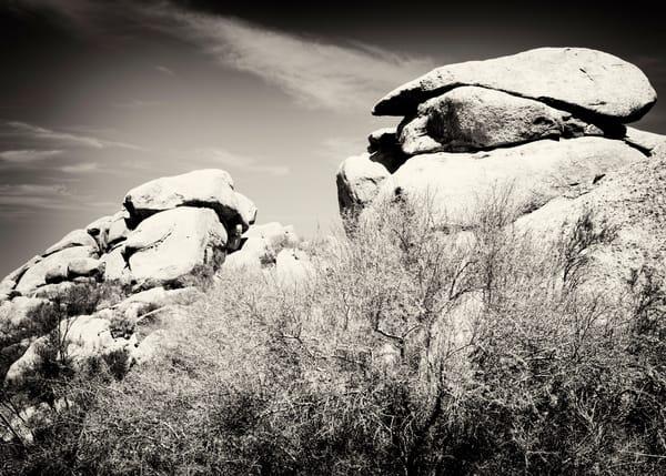 Cave Creek 8735 Sepia Photography Art | Colin Murray Photography LLC