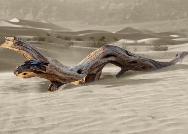 Death Valley 781 3 Photography Art | Colin Murray Photography LLC