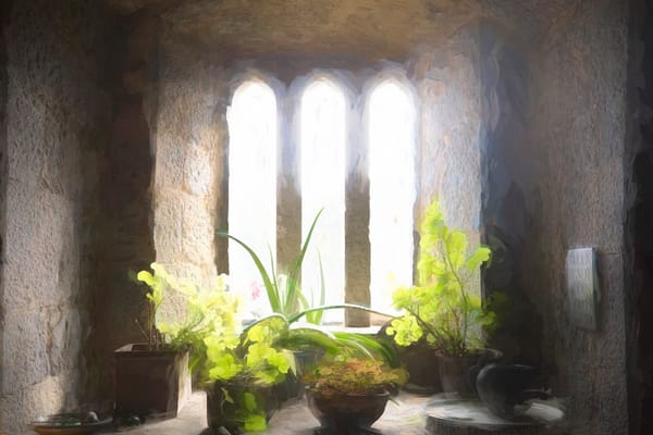 Light Through The Castle Window Photography Art   Laura Tidwell Photography