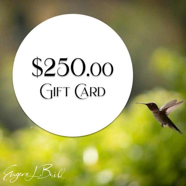 Eugene Brill $250 Gift Card Fine Art Photography | Eugene L Brill