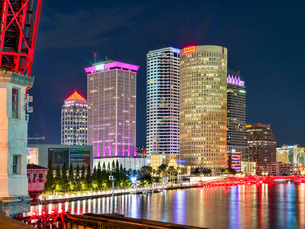 Tampa, Fl Art | Best of Show Gallery