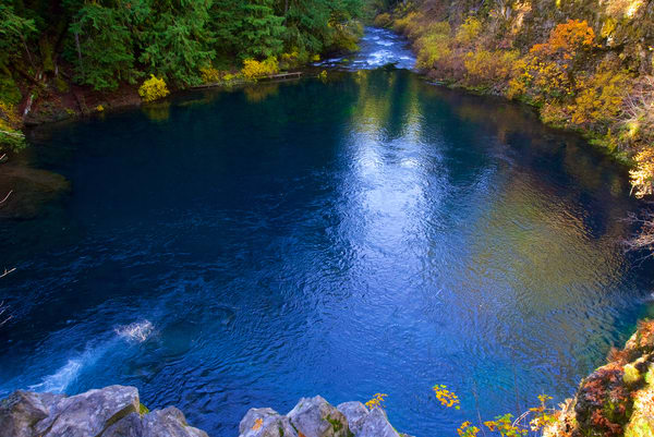 Tamolitch Blue Pool Oregon Art | Shaun McGrath Photography