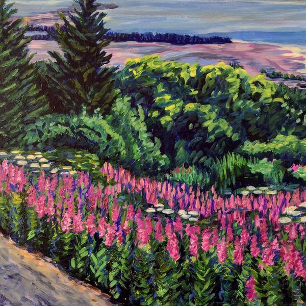 Homer Hillside Fireweed