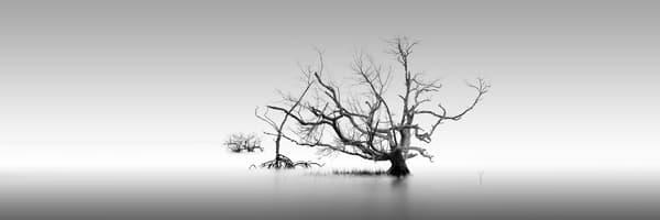 Snipes Key Photography Art | DE LA Gallery