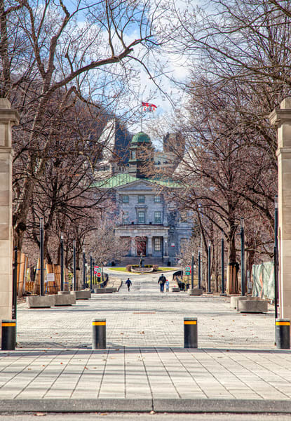 McGill Campus - Prints