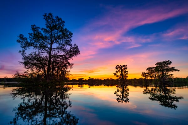 Sunset over Henderson Swamp - Louisiana swamp photography prints