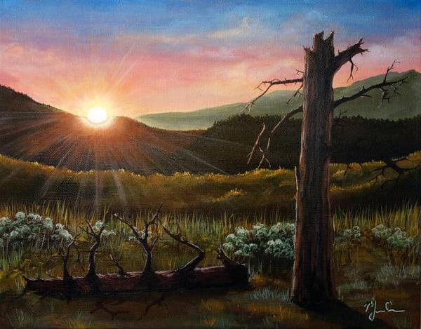 Ponderosa Sunrise Art | Monique Cudbertson Art