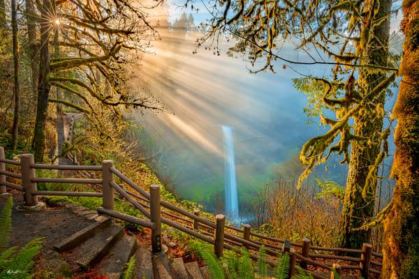 Silver Falls Gold Art | Jeffrey Knight Photography
