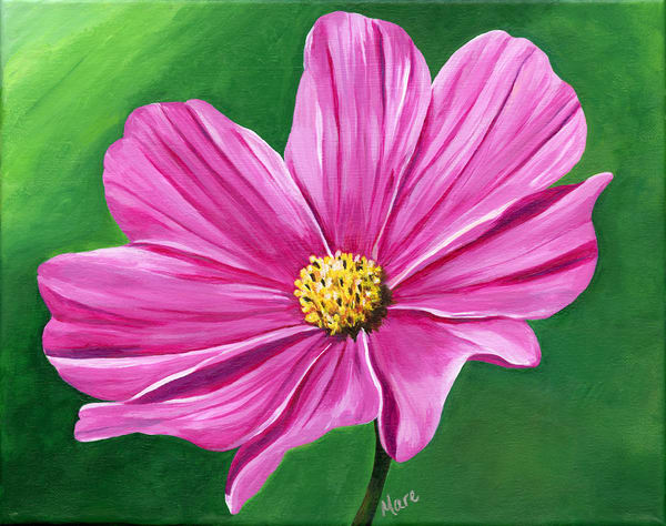 """Harmony"" acrylic artwork by Mary Anne Hjelmfelt of a pink Cosmos flower."