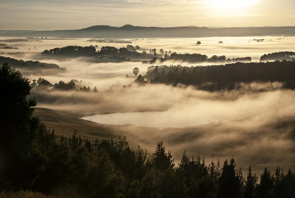 mist in the valley 5