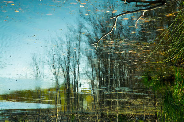 Reflection 2 Photography Art | MPF Gallery