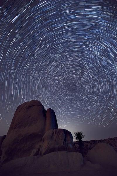 Star Trails In Joshua Tree Photography Art | Chad Wanstreet Inc