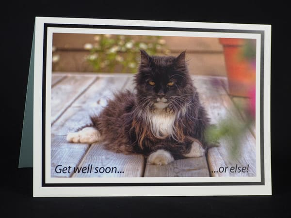 Get Well Or Else Card