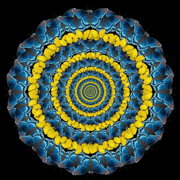 Blue And Gold Art   geometricphotographica