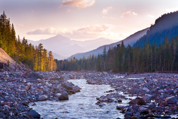 Rainier And The River Photography Art | Laura Tidwell Photography