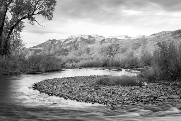 golden glow at the provo river black and white