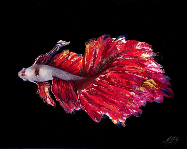 Valentine Betta | Original Mixed Media Painting