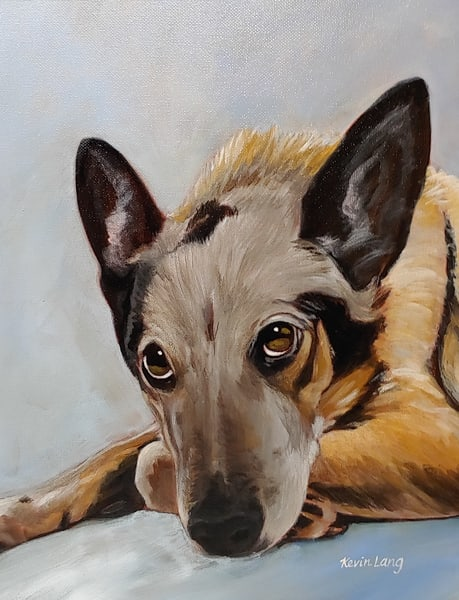 Shelby | Kevin Lang Fine Art