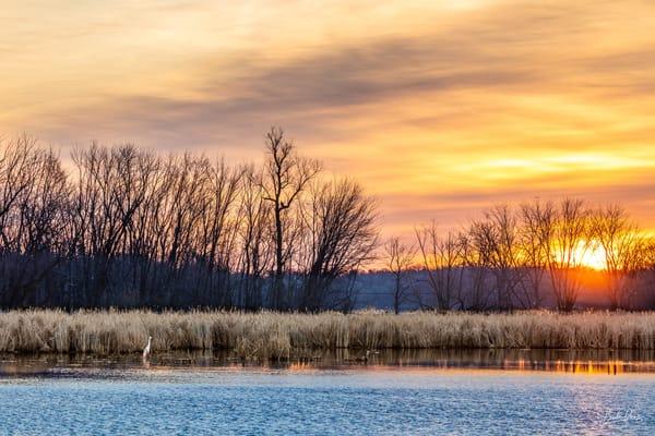 Cattail Marsh Dawn On The Fox River Photography Art | brucedanz