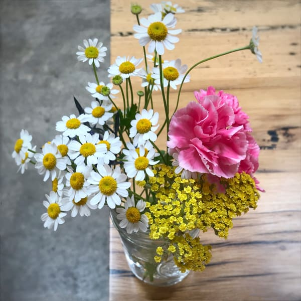 Sweet Daisy Bouquet Art | Jenifer Cady Photography