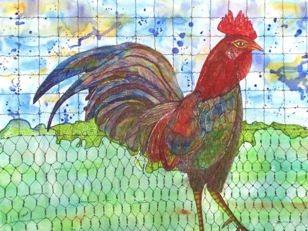 Jsalvo-Banty-Rooster
