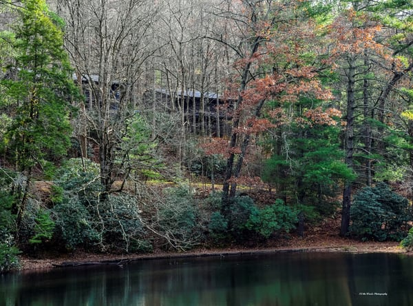 Vogel State Park Photography Art   N2 the Woods Photography - Fine Art Photography