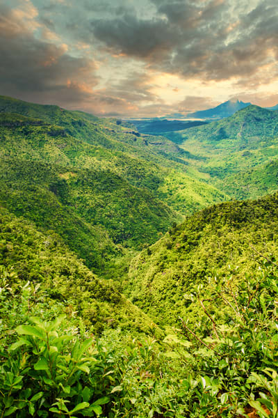 Mauritius Tropical Valley | Mountain Landscape Photography Print