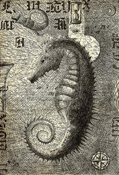 Seahorse  Art by artemart