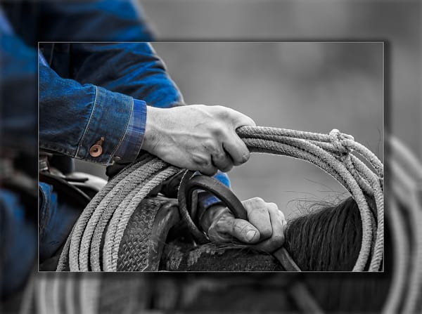 Rope Handling  Photography Art   Whispering Impressions