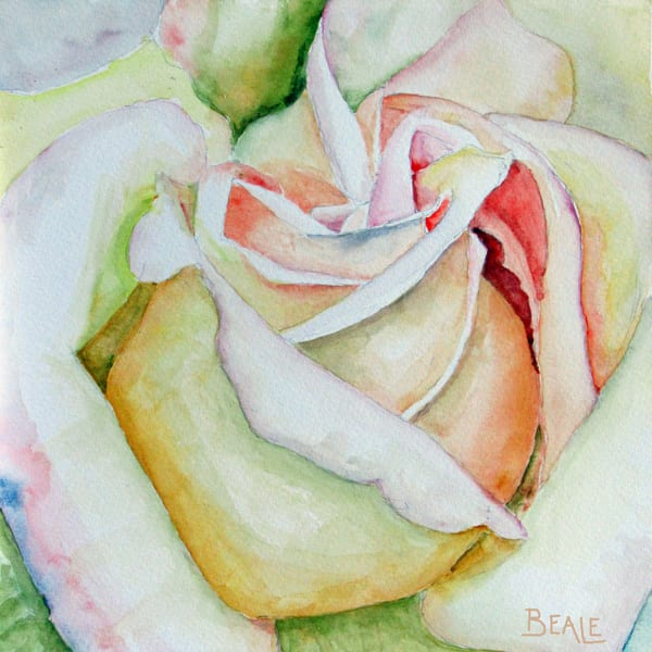Tennessee Rose Art | David Beale