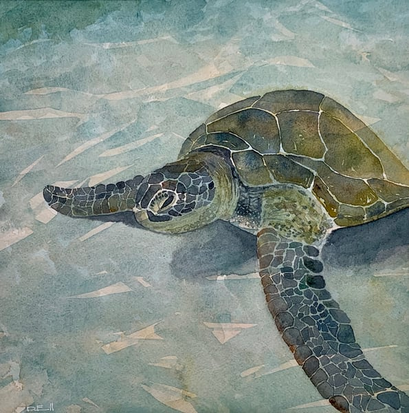 watercolor, seaturtle, maui, art, hawaii, ocean