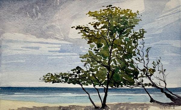 beach, shade, watercolor, maui, hawaii, art