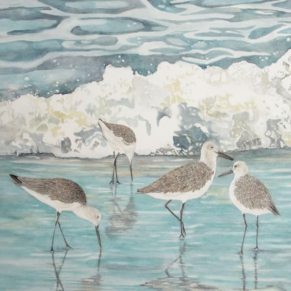Watercolor print on fine art paper by artist Sandra Galloway, of four willets in the surf on a tropical beach