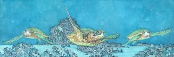 A print on fine art paper of three large sea turtles swimming through coral, by watercolor artist Sandra Galloway. Framing options are available