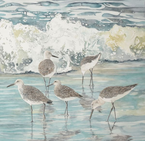A gallery-wrapped print on canvas by watercolor artist Sandra Galloway, depicting 5 willets on the beach enjoying the tropical surf