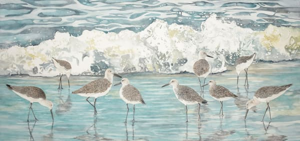A print on canvas of nine willets in the surf. Painting by watercolor artist Sandra Galloway