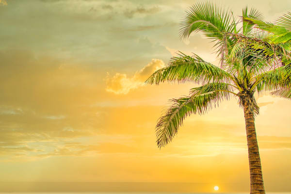 Colombian Dreams | Tropical Landscape Photography Print