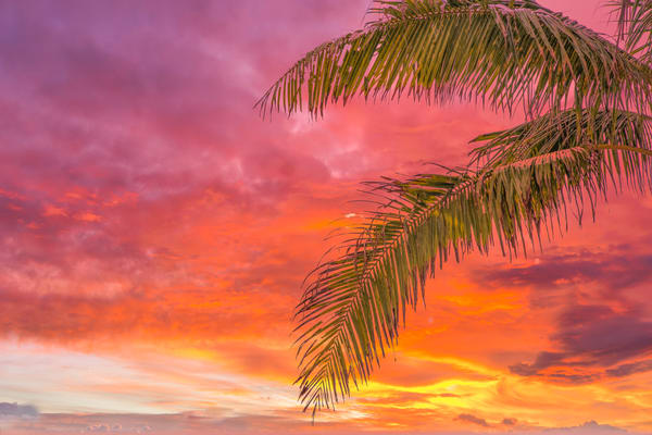 Dramatic Caribbean Sunset | Tropical Landscape Photography Print