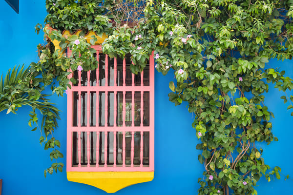 Colombia Color | Urban Art Photography Print