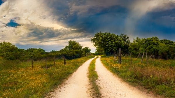 Texas Winding Road Photography Art | Grace Fine Art Photography by Beth Sheridan