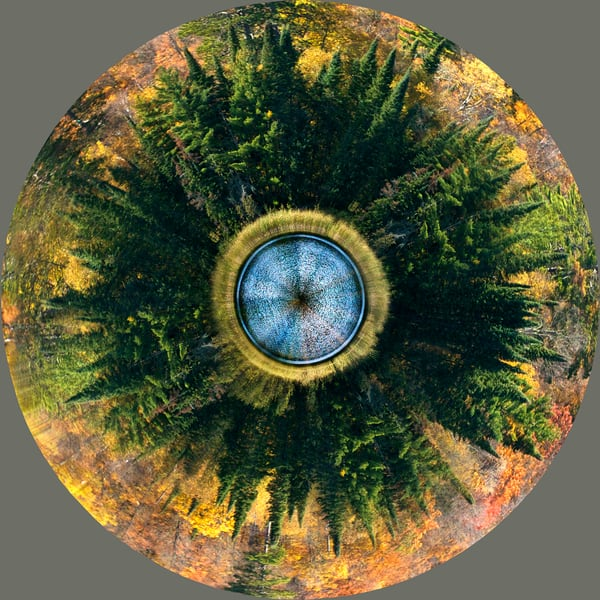 Itasca Planet, by Laura Grisamore.