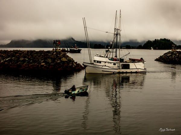Harbouring No Ill Will| Randy Sedlacek Photography