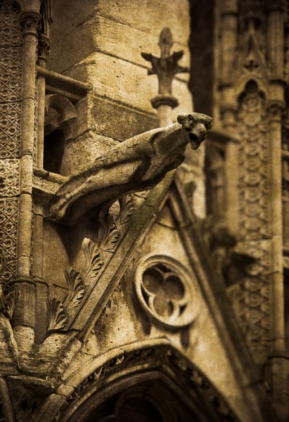 A gargoyle from Notre Dame cathedral.