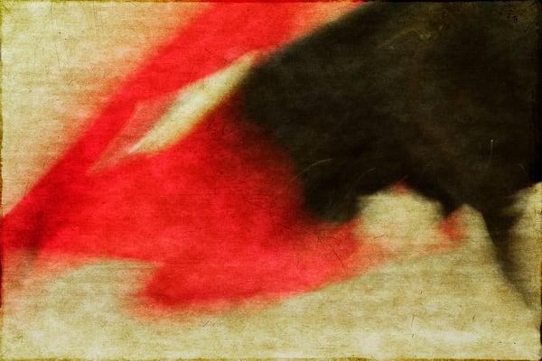 Rhythm Of The Bullfight 2 F Photography Art   Doug Landreth Photography