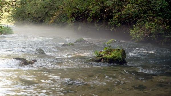 Misty River in the Ozarks