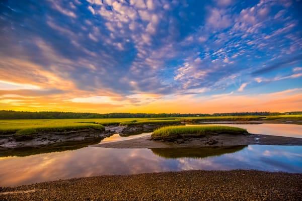 Rye  Photography Art | Laura Tidwell Photography