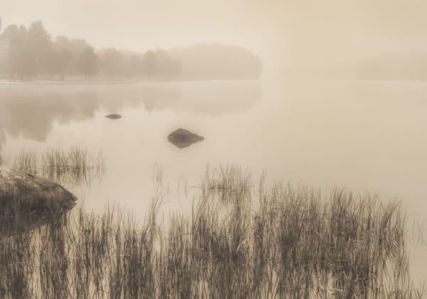 Pond Scene Early Morning Ohio Photography Art   Mark Steele Photography Inc